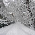 すでに30cmの積雪が・・。